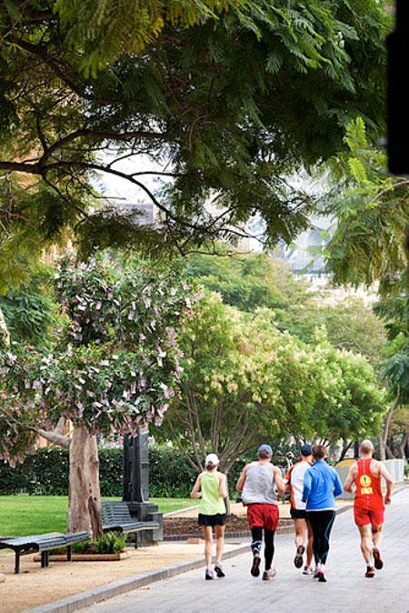 in a hurry par rabodirect australia Благодаря партизанам деньги начали расти на деревьях