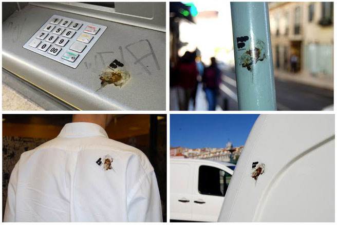 popuplisboa2 Атака урбанистических голубей