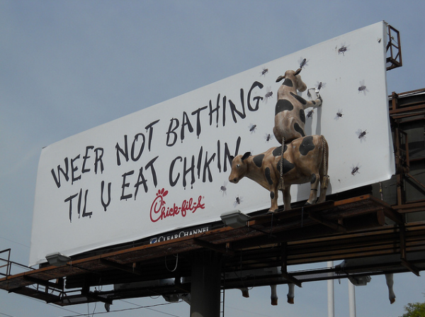 Chick fil A billboard cow chicken spicy bruger outdoor advertising 5 600x447 Чик Фил – Пойми Корову